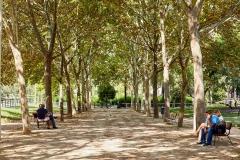 GANDIA (VALENCIA), 20/09/2017.- Parque Alqueria Nova (Sant Pere). Sendes Urbanes de Gandia. Senda Morada.. FOTO: NATXO FRANCÉS