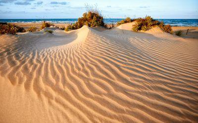Les Dunes de l'Auir
